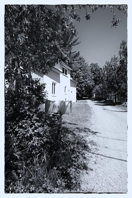 La maison sous les arbres.