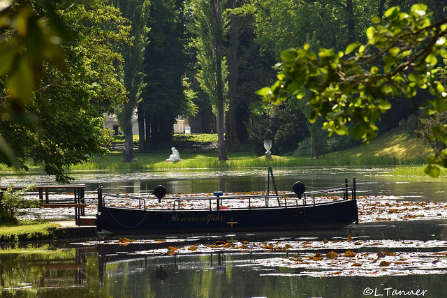 Wörlitzer Park Juni 2021