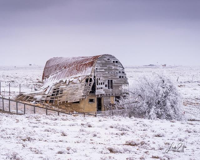 Derelict in the Deep Freeze