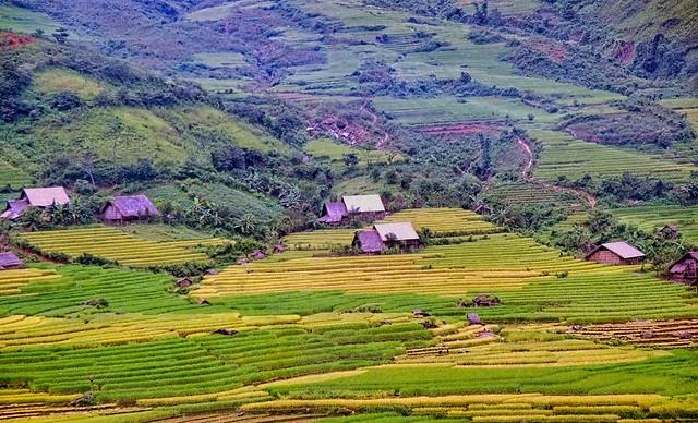 Vietnam - Sapa - landscape