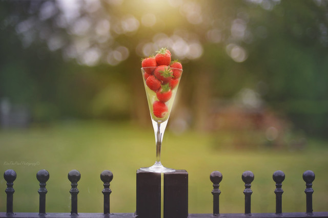 Strawberry Fence...
