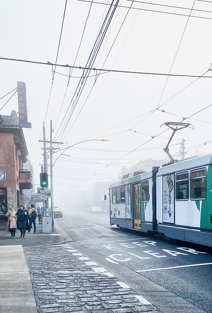 162/365 blanket of fog on a Lygon St morning.