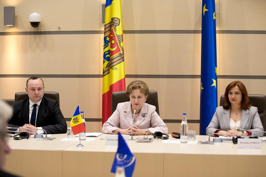 11.06.2021 Întrevederea  Președintelui Parlamentului Zinaida Greceanîi cu Misiunea preelectorală a APCE