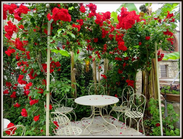 Il gazebo di rose