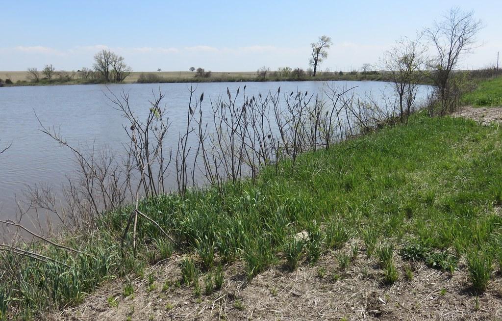 Saint Louis and San Francisco Railroad Retention Pond (Beaumont, Kansas)
