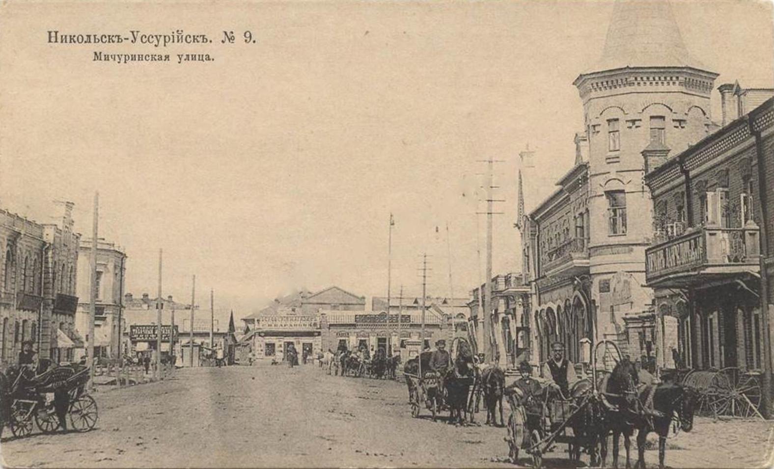 Мичуринская улица.