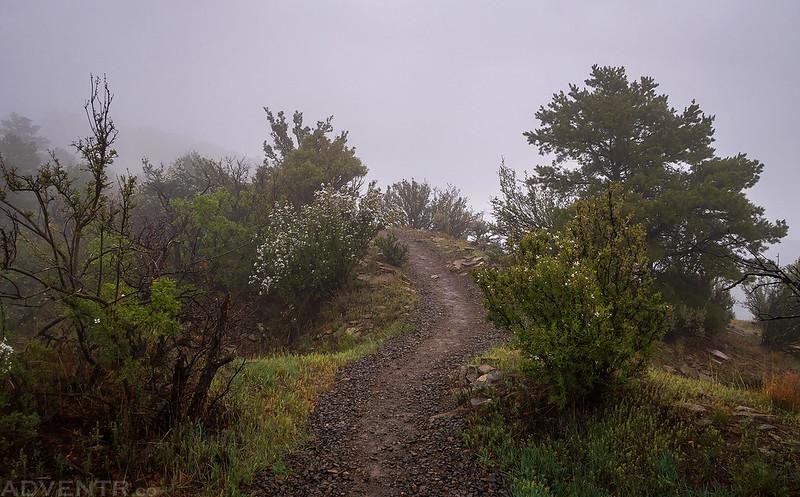 Great House Pueblo Trail