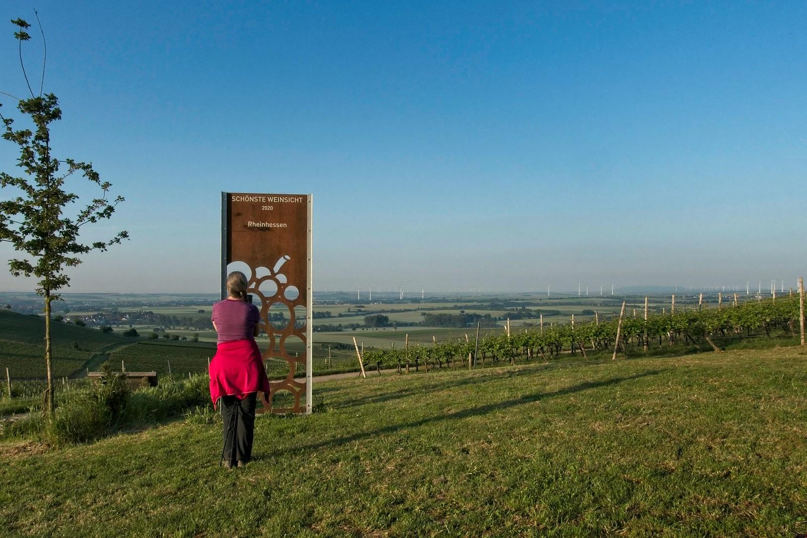 Schönste Weinsicht 2020 Rheinhessen - SunriseHike am Selzbogen in Rheinhessen