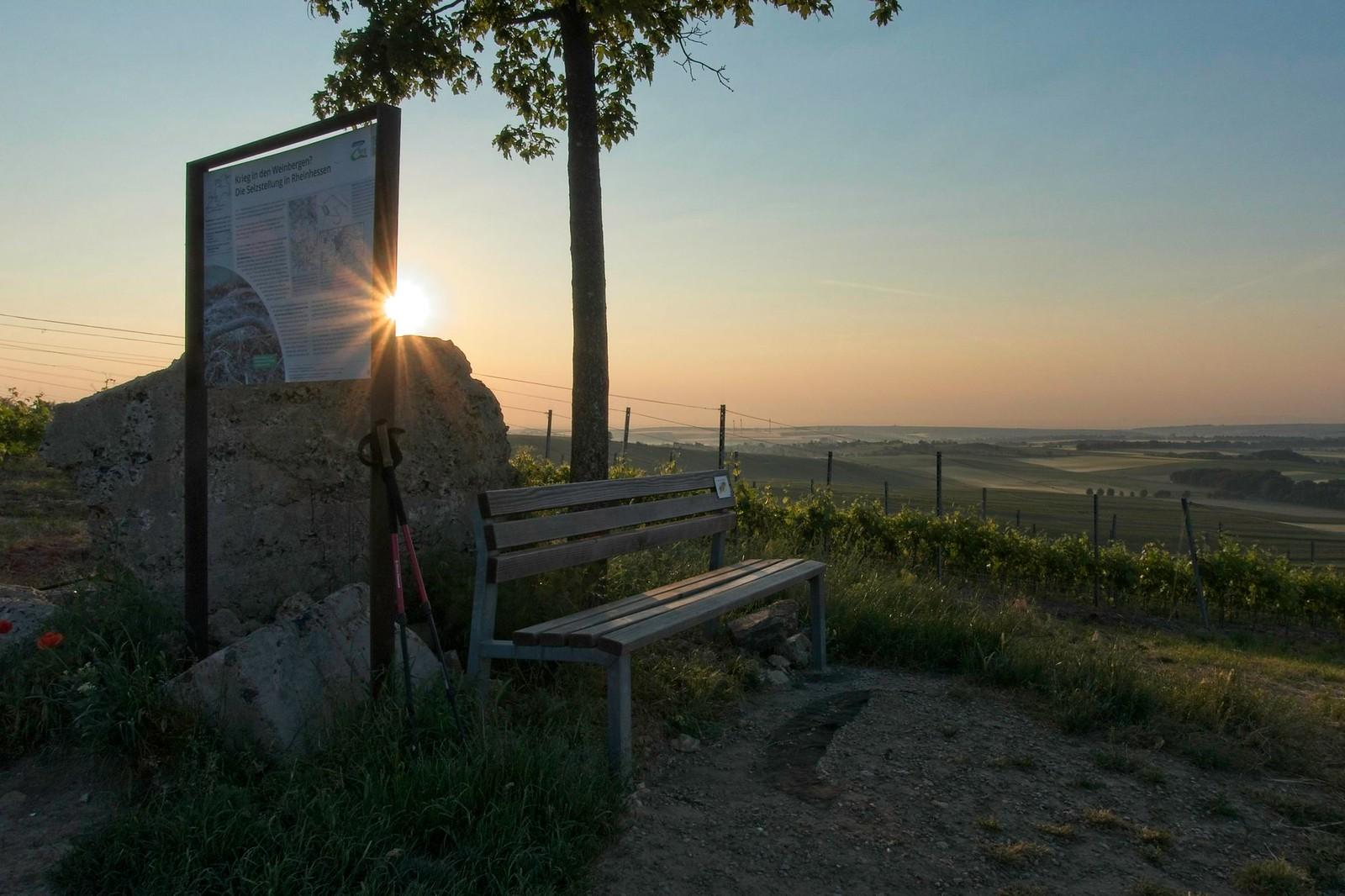 Selzstellung über dem Selztal - SunriseHike am Selzbogen in Rheinhessen
