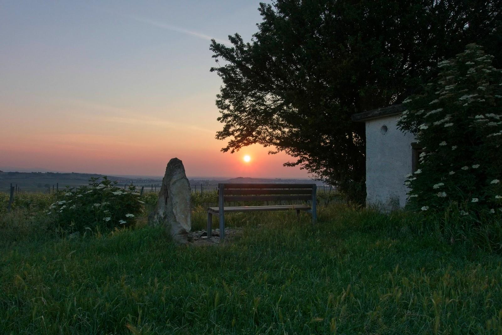 Sonnenaufgang über Frankfrut: Wingertshäuschen auf dem Winkel - SunriseHike am Selzbogen in Rheinhessen