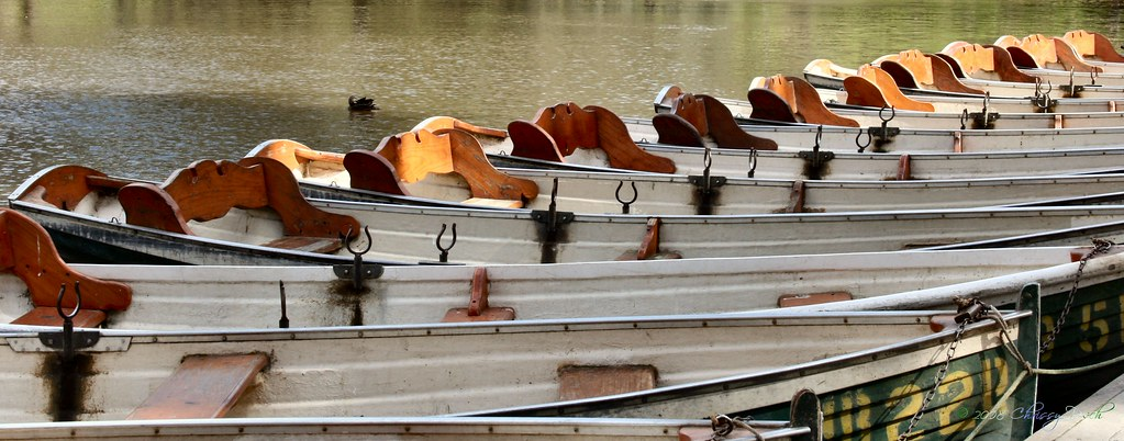 boats-in-a-row