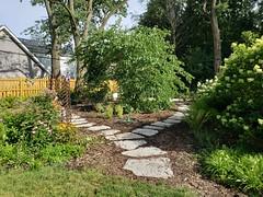 Garden #4
