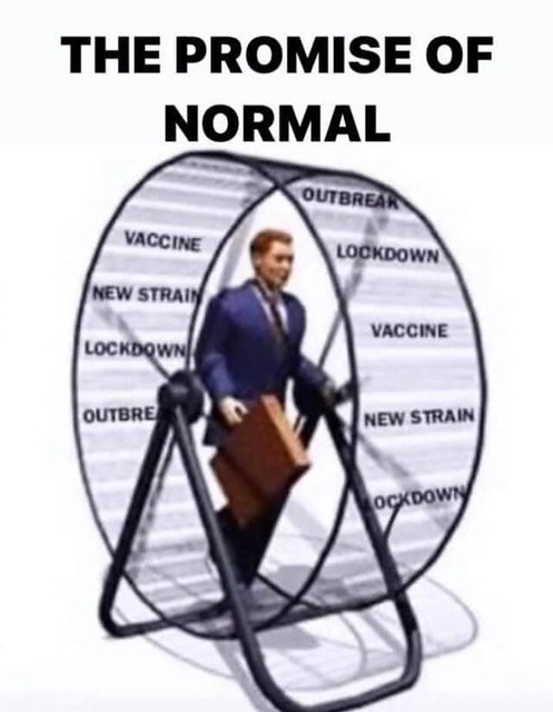 The Promise Of Normal