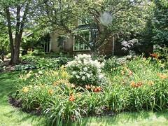 Garden #6