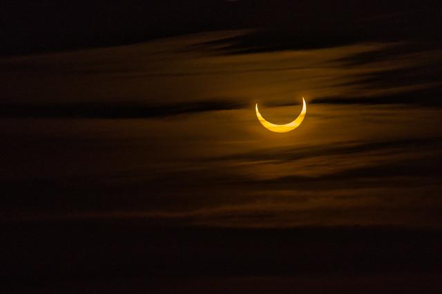 Solar Eclipse - photo 3