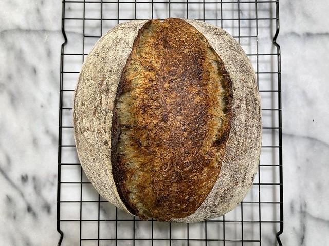 Whole Wheat 25% - Yomogi