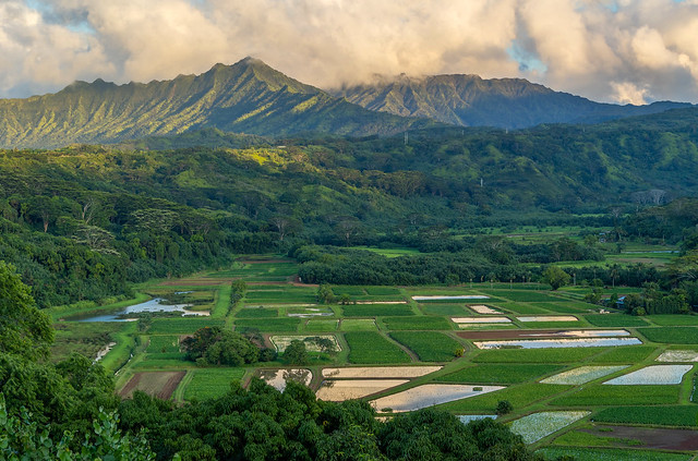 Island of Kauai, Hawaii - along north shore
