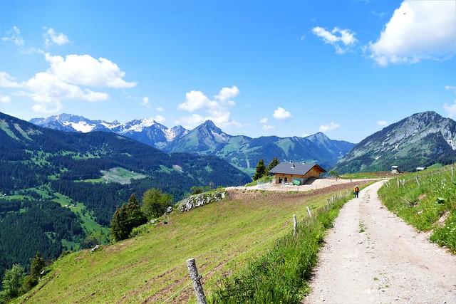 06.11.21.The Way of Life - Le Chemin de la Vie