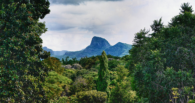 Mauritius Pamplemousses III *explored*
