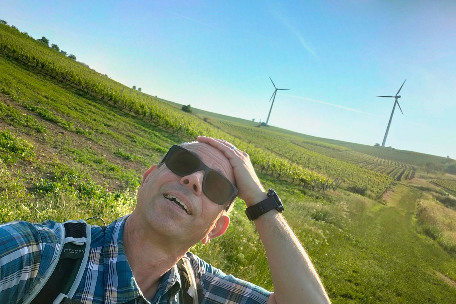 Die Frisur sitzt - SunriseHike am Selzbogen in Rheinhessen
