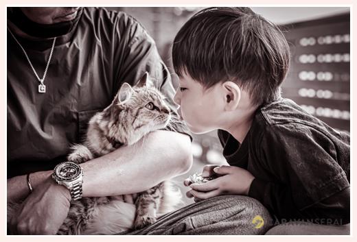 猫とキスをする男の子