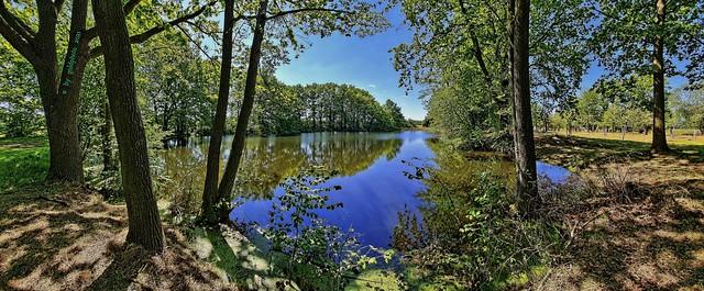 Naturschutzgebiet Eschefelder Teiche - Juni 2021