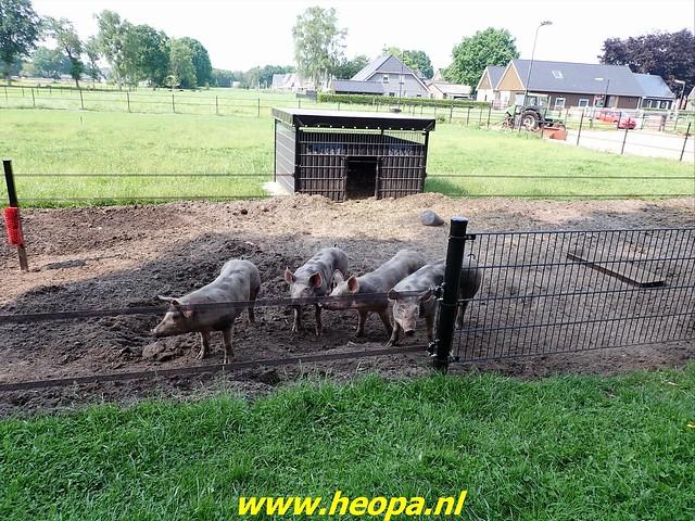 2021-06-09           Nunspeet 't Harde Elburg  (137)