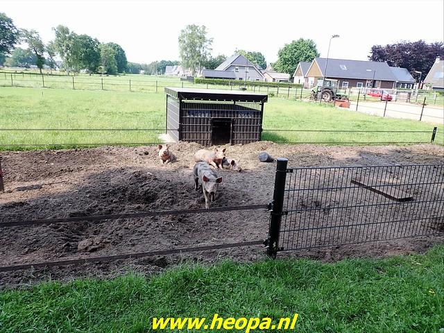 2021-06-09           Nunspeet 't Harde Elburg  (136)