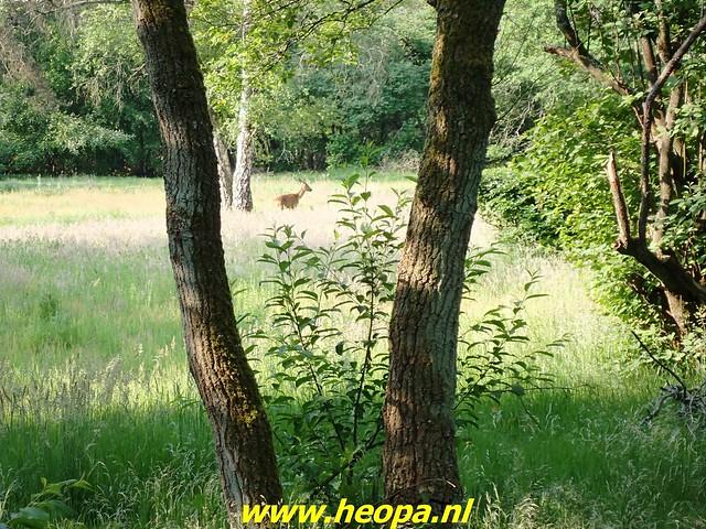 2021-06-09           Nunspeet 't Harde Elburg  (27)
