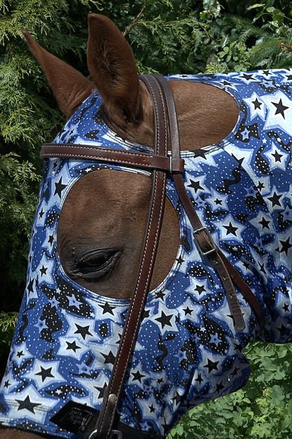 Horse Head Cover