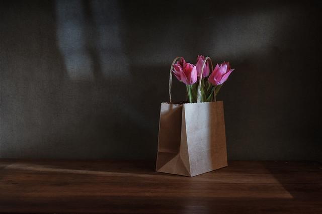 Tulips on Saturday.
