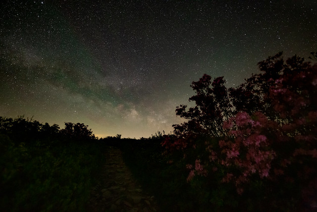 Night in the Spring ...
