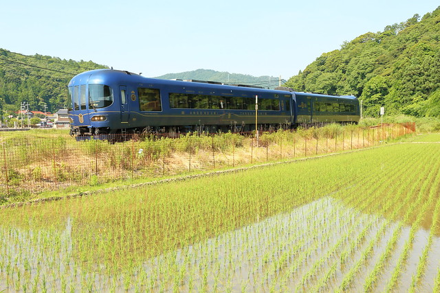 DMU and the rice fields
