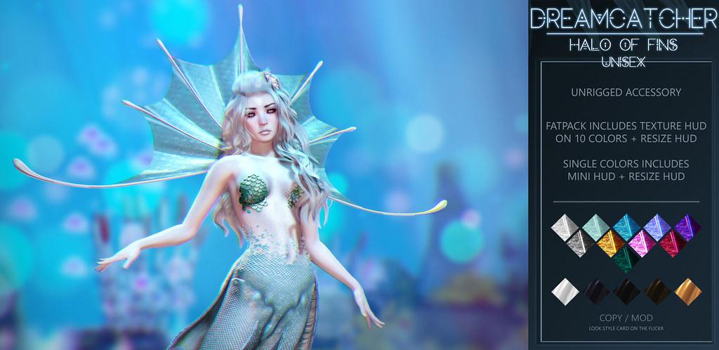 DREAMCATCHER // Halo of fins @ Mermaid Cove