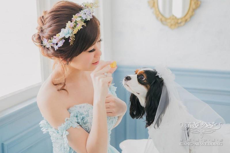 寵物婚紗照