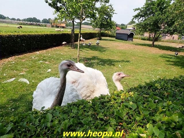 2021-06-09           Nunspeet 't Harde Elburg  (122)