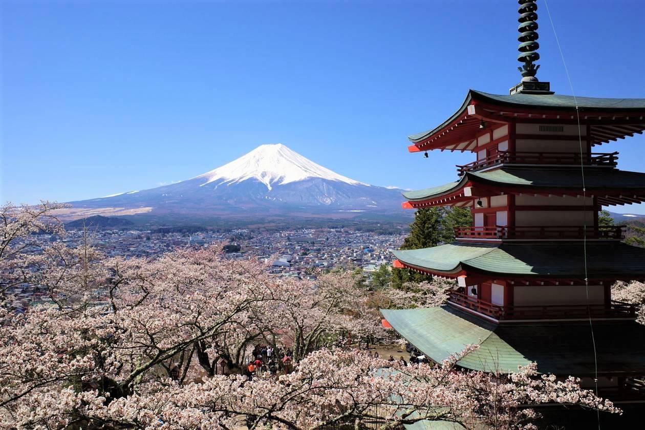 富士山と桜と五重塔