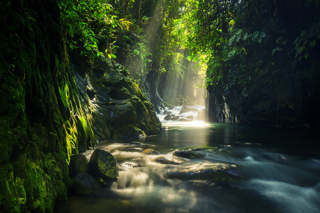photos of natural landscapes and tropical forests in Indonesia. view of the new alley waterfall in North Bengkulu. tourist destination for photographers or those who like to travel