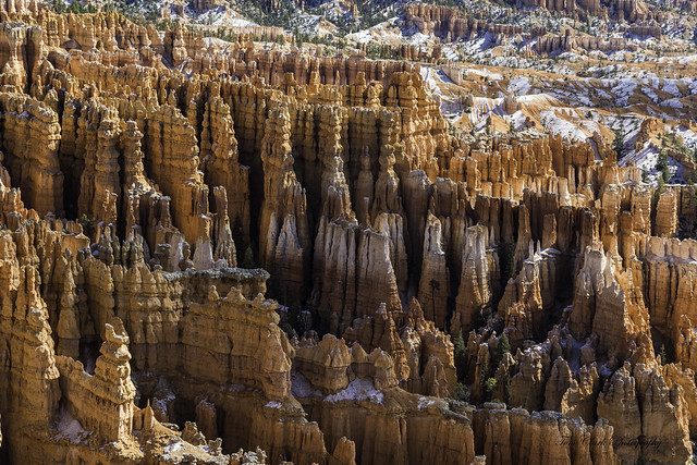 Bryce Canyon NP - famous hoodoos dressed in snow