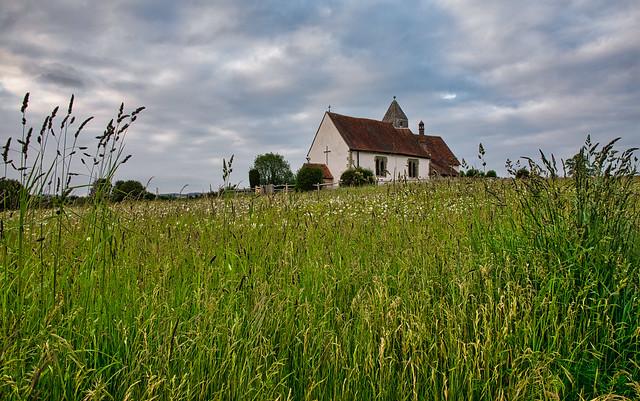 Long Grass at St Huberts Church