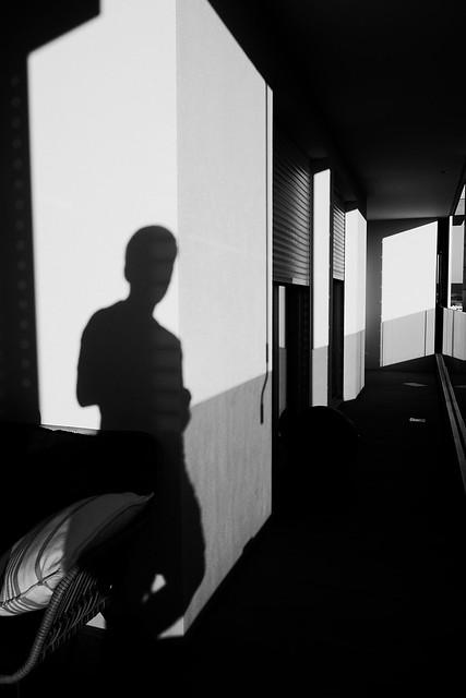 Retrato en la sombra