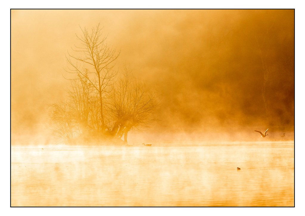 Steaming Sunrise 9076