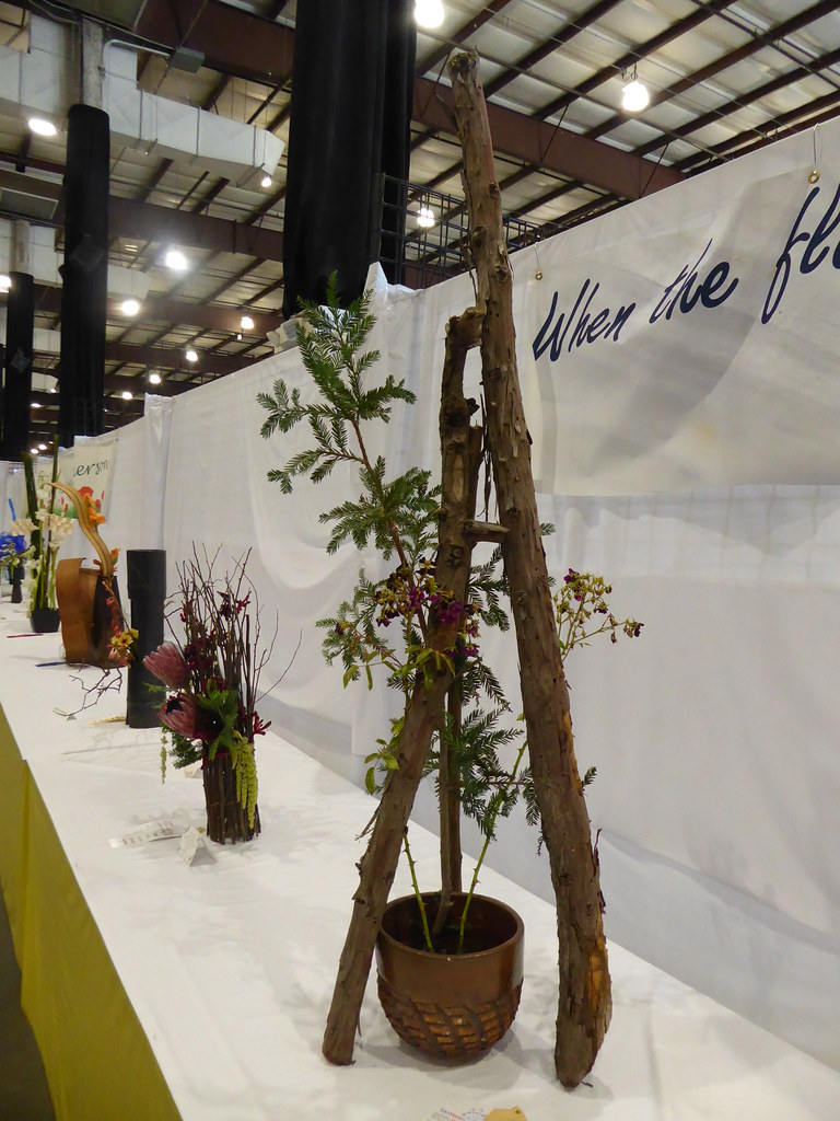 Branch display by Sahshah Middleton