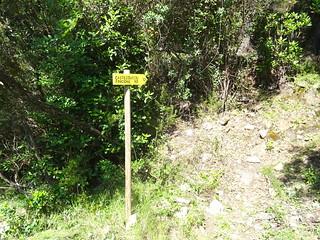 Embranchement Finicione RD (HR12) sur la piste RD de la Sainte-Lucie