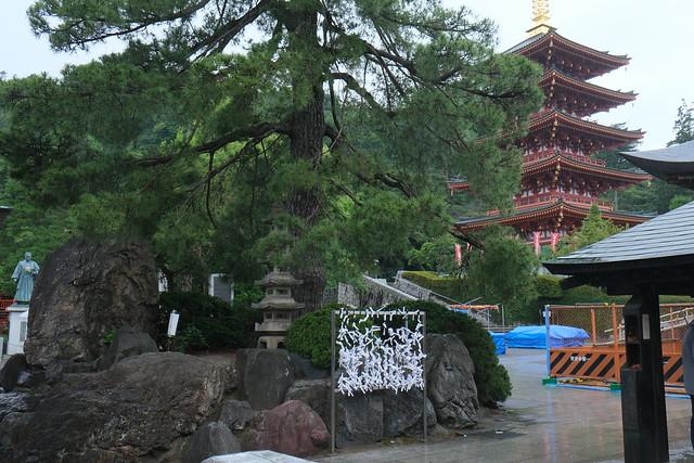 Ajisai at Takahata Fudoson Kongoji