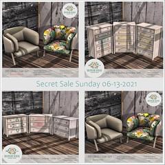 Secret Sale Sunday 06-13-2021