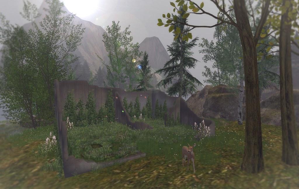 Lady's Garden – Overgrown House Ruins