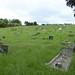 6 June. Sea of grass