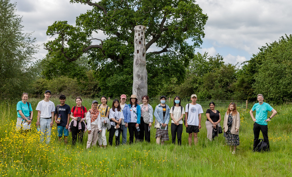Summer Walk - Habitat Artwork - University Warwick - 12 Jun 2021