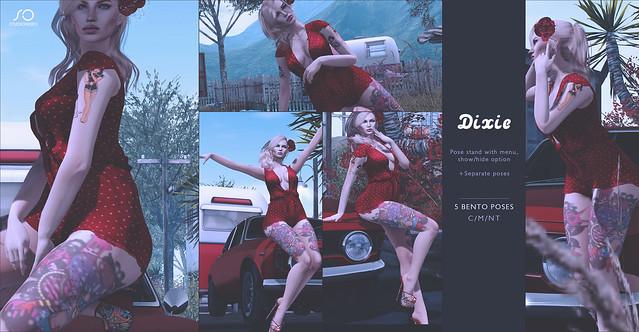 DIxie @ Vintage Fair